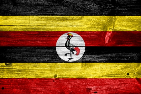 Uganda Flag painted on old wood plank texture photo