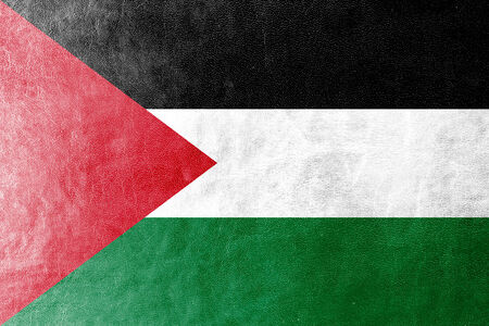 Palestina vlag geschilderd op lederen textuur
