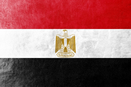 egypt flag: Egypt Flag painted on leather texture Stock Photo