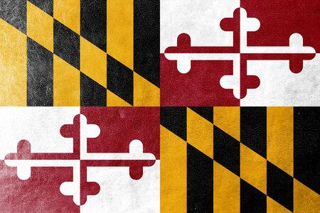 identidad cultural: Bandera del estado de Maryland pintada en textura de cuero
