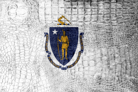 Massachusetts State Flag painted on luxury crocodile texture photo