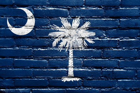 South Carolina State Flag painted on brick wall photo
