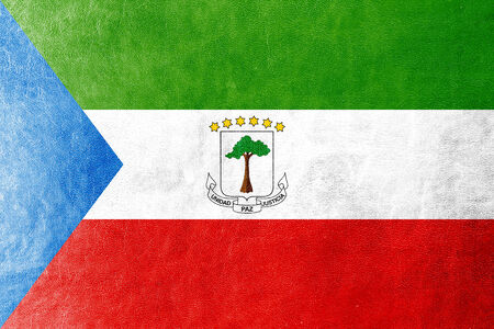 equatorial guinea: Equatorial Guinea Flag painted on leather texture