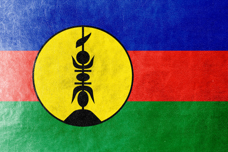identidad cultural: Bandera de Nueva Caledonia pintada en textura de cuero Foto de archivo