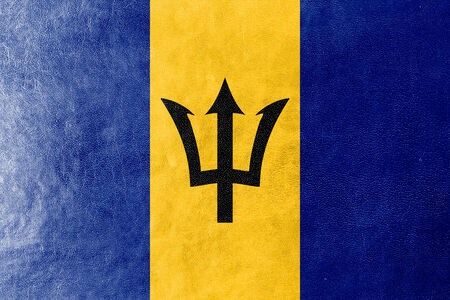 barbadian: Barbados Flag painted on leather texture