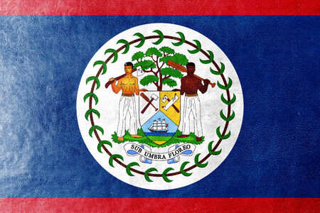 Belize Flag painted on leather texture photo