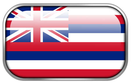 hawaii flag: Hawaii Flag rectangle glossy button