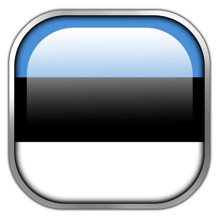 Estonia Flag square glossy button photo