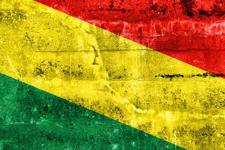 bandera de bolivia: Bolivia bandera pintada en la pared del grunge