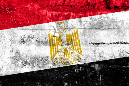egypt flag: Egypt Flag painted on grunge wall Stock Photo