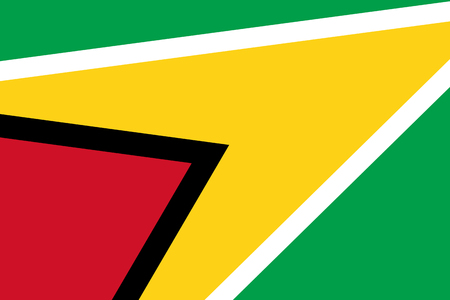guyana: Guyana Flag. Close up.