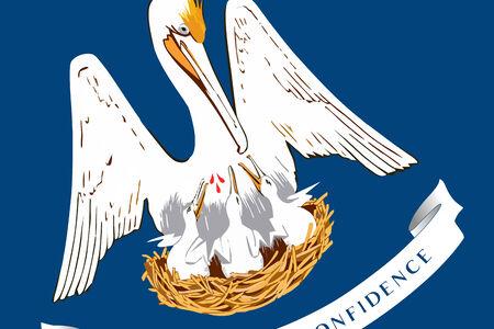 louisiana flag: Louisiana State Flag. Close up.