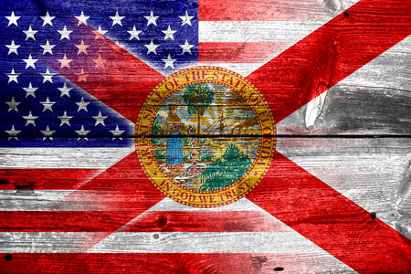 consolidated: USA and Florida State Flag painted on old wood plank texture