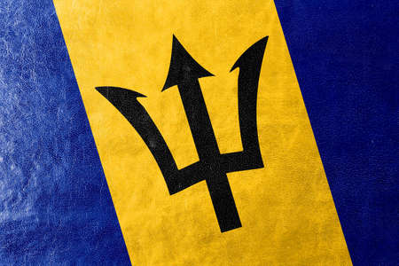 barbados: Barbados Flag painted on leather texture