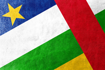 central african republic: Central African Republic Flag painted on leather texture