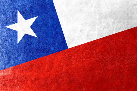 chile flag: Chile Flag painted on leather texture