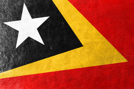 timor: East Timor Flag painted on leather texture Stock Photo