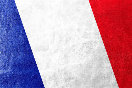 france painted: France Flag painted on leather texture Stock Photo