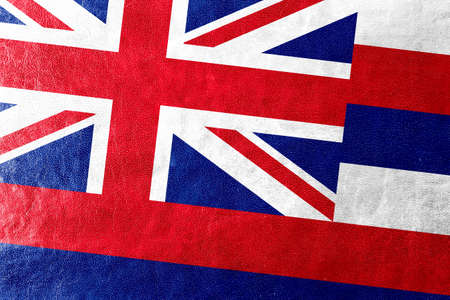 hawaii flag: Hawaii Flag painted on leather texture