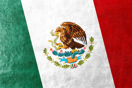 flag of mexico: Mexico Flag painted on leather texture
