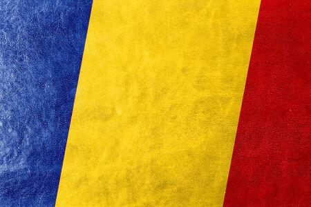 romania flag: Romania Flag painted on leather texture