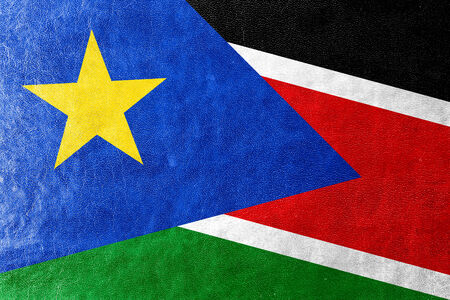south sudan: South Sudan Flag painted on leather texture Stock Photo