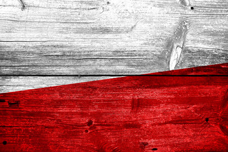 Poland Flag painted on old wood plank texture photo