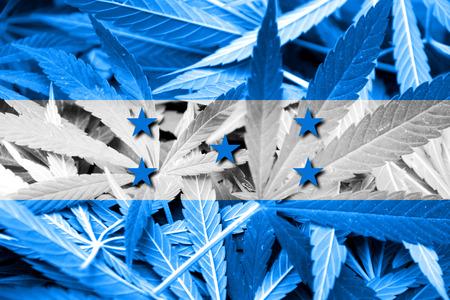 drug dealer: Honduras Flag on cannabis background. Drug policy. Legalization of marijuana