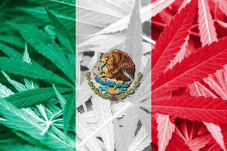 Mexico Flag on cannabis background. Drug policy. Legalization of marijuana