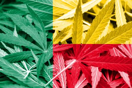 drug dealer: Benin Flag on cannabis background. Drug policy. Legalization of marijuana Stock Photo