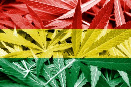 bandera de bolivia: Bandera de Bolivia en el fondo de cannabis. La pol�tica de drogas. La legalizaci�n de la marihuana