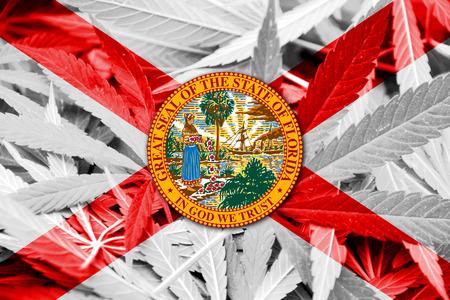 leaf marijuana: Bandera del estado de la Florida en el fondo de cannabis. La pol�tica de drogas. La legalizaci�n de la marihuana