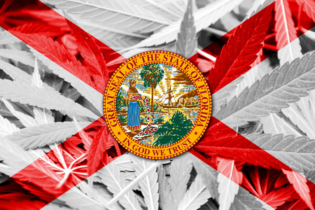smuggling: Florida State Flag on cannabis background. Drug policy. Legalization of marijuana