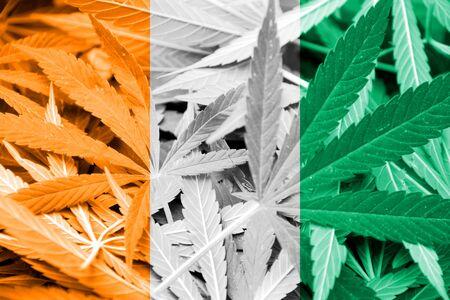 grass close up: Ivory Coast Flag on cannabis background. Drug policy. Legalization of marijuana Stock Photo