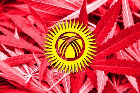 drug dealer: Kyrgyzstan Flag on cannabis background. Drug policy. Legalization of marijuana Stock Photo