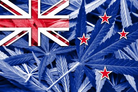 drug dealer: New Zealand Flag on cannabis background. Drug policy. Legalization of marijuana