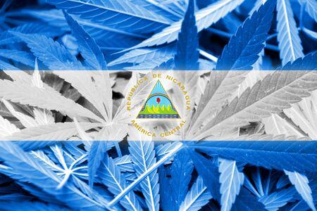 drug dealer: Nicaragua Flag on cannabis background. Drug policy. Legalization of marijuana