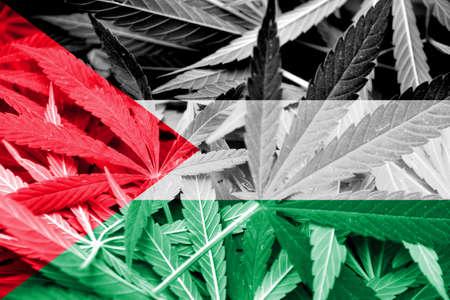 middle joint: Palestine Flag su cannabis sfondo. Politica delle droghe. Legalizzazione della marijuana