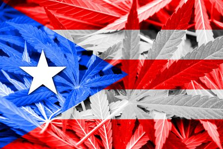 bandera de puerto rico: Bandera de Puerto Rico en el fondo de cannabis. La política de drogas. La legalización de la marihuana