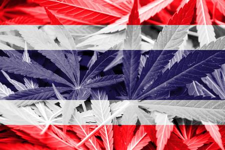 thai herb: Thailand Flag on cannabis background. Drug policy. Legalization of marijuana