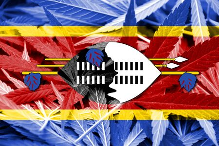 smuggling: Swaziland Flag on cannabis background. Drug policy. Legalization of marijuana