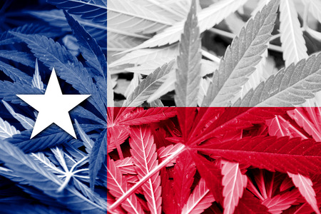texas state flag: Texas State Flag on cannabis background. Drug policy. Legalization of marijuana