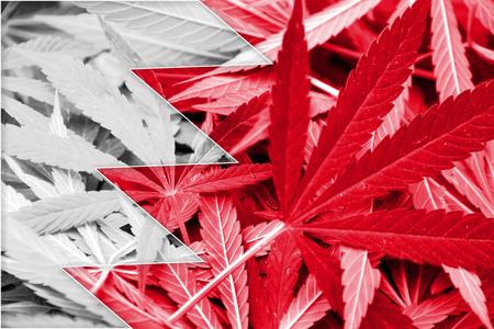 grass close up: Bahrain Flag on cannabis background. Drug policy. Legalization of marijuana