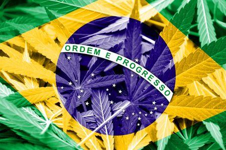 drug dealer: Brazil Flag on cannabis background. Drug policy. Legalization of marijuana
