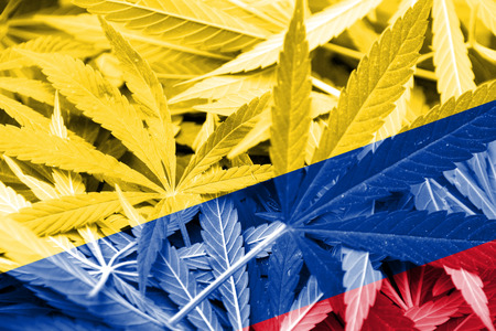 legalization: Colombia Flag on cannabis background. Drug policy. Legalization of marijuana Stock Photo