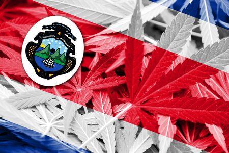 costa rican flag: Costa Rica Flag on cannabis background. Drug policy. Legalization of marijuana