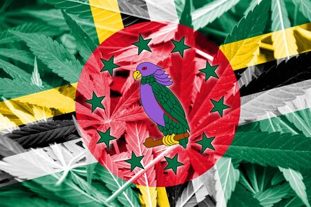 dominica: Dominica Flag on cannabis background. Drug policy. Legalization of marijuana