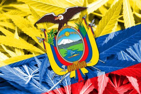 drug dealer: Ecuador Flag on cannabis background. Drug policy. Legalization of marijuana