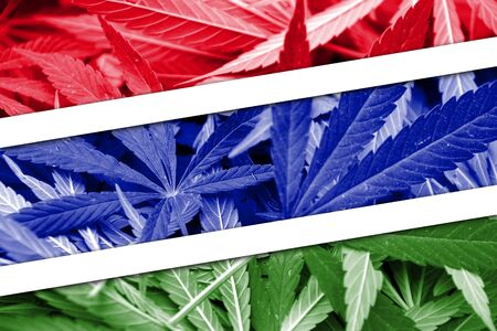 legalization: Gambia Flag on cannabis background. Drug policy. Legalization of marijuana Stock Photo