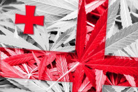 drug dealer: Georgia Flag on cannabis background. Drug policy. Legalization of marijuana Stock Photo